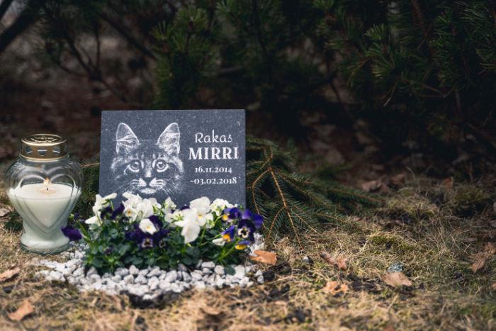 muistomerkki lemmikin haudalle